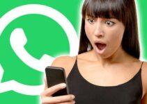 whatsapp esta offline